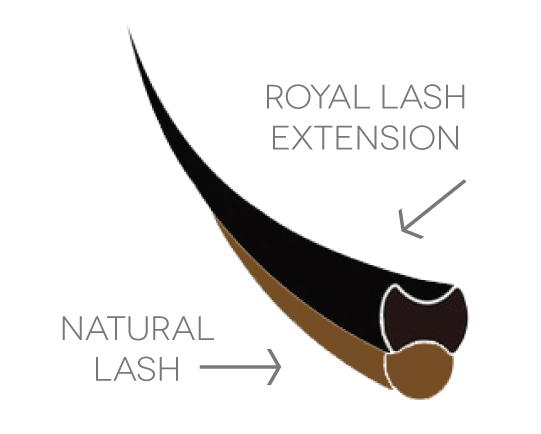 Royal Lash Extension