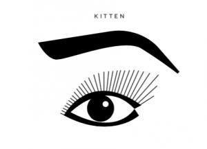 Kitten Lash Map